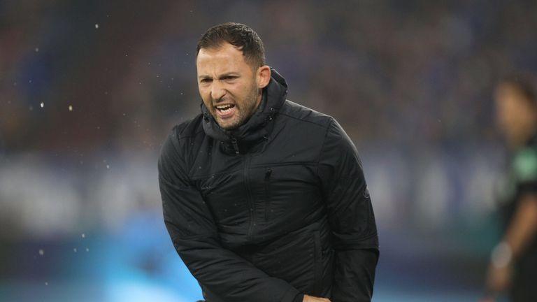 Domenico Tedesco braucht mit Schalke endlich die ersten Punkte. In Freiburg muss ein Sieg her.